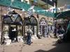 hastings-2012_p1190459